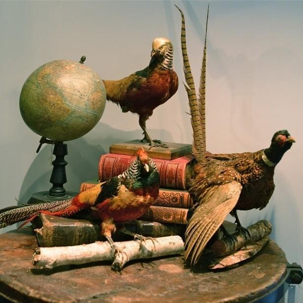 Stilleben von dekorative Objekte