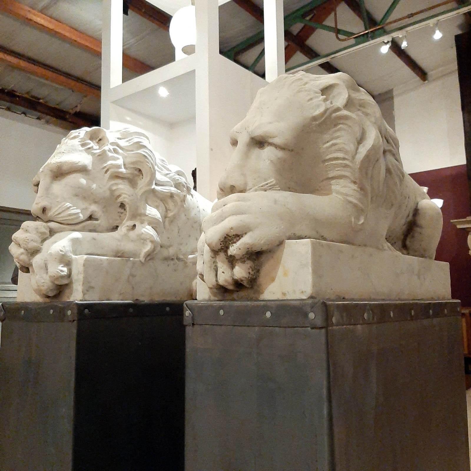 Schöne antike Marmor Löwen